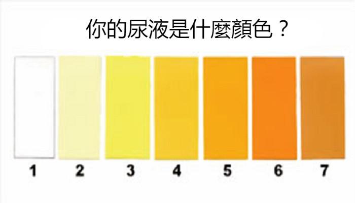 [旺角泌尿科新聞] 一泡尿揪出病灶!自我檢測三重點:顏色、氣味、有泡泡